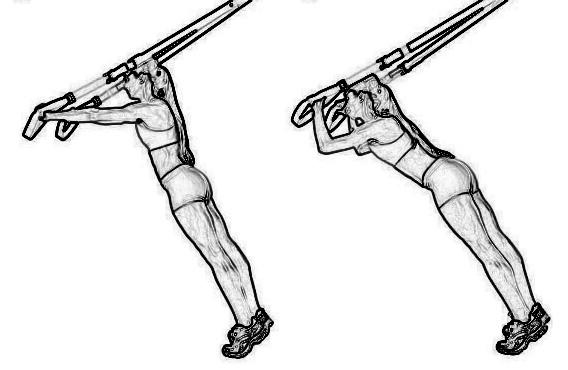 Sangles type trx au meilleur prix furious fitness for Exterieur triceps